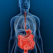 Gastroenterologia MedCurso 2019 - Victória Melo
