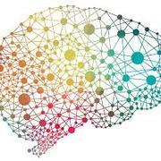 Psychology 3313- Behavioral Neuroscience