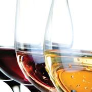 dipWSET D0 | Wine Tasting