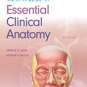Anatomy - HSC501