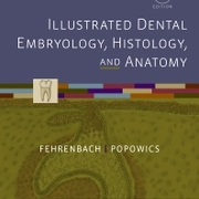 DEH1130 Oral Histology & Embryology