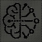 The Computing Brain