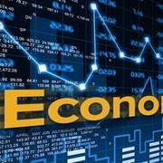 Microeconomics Year 1