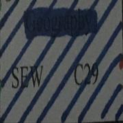 Year 8 Geography