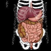 Hépato-Gastro