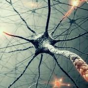 Systems   Nausea, Pain, Sleep disorders, Substance dependence