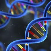 FRCPath Genomics