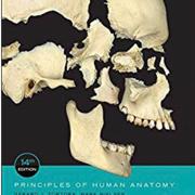 HLSC 120 Human Anatomy