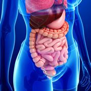 Gastrointestinal 2