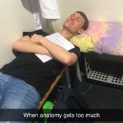 Y2 GI Anatomy - JR