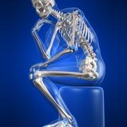 Y1-3 Osteology
