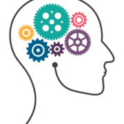 Psychology (Social Approaches case studies)