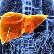 Gastroenterology: HPB