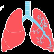 MED-1202 Pneumologie