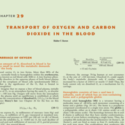 Ch 29 - Transport Of Oxygen & Carbon Dioxide In The Blood