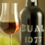 WSET Diploma D5 - Fortified Wines