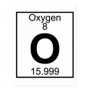 Science Grade 7