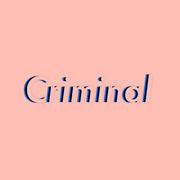 4. Criminal Law
