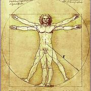 Core skills: anatomy