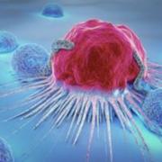 Year 2 MCD Cancer