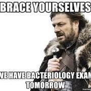 Bacto exam