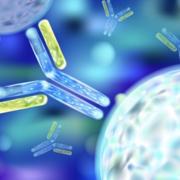 Year 2 MCD Immunology