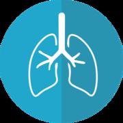 K1 - Essays: Lunge