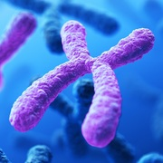 GBA Genetics