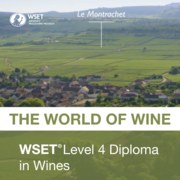 dipWSET World of Wines (D3)