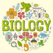 MFCARDS - Biologia