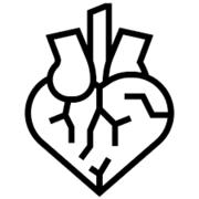 SOS Anatomia