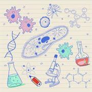 Biology AQA A Level 2019-2021