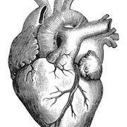 CM - Cardiologia