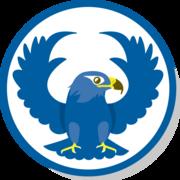 Falcons Y1