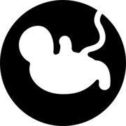 MIF - Obstetrícia