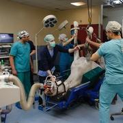 Patologia cirúrgica de grandes animais