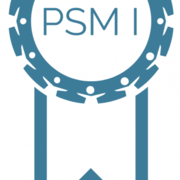 80 questions PSM 1