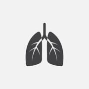 VETS2011 Cardiovascular, Respirartory, Lymphatic