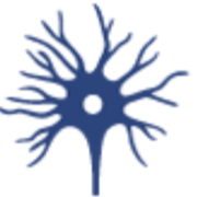 Neurologie 🤓💣📖🌀💭