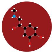 Bioquímica (Biociências I e II)
