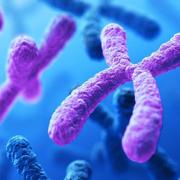 Genética (Diagnóstico Oral I)