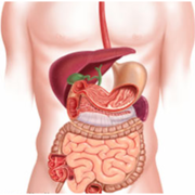 ENARM Gastroenterología