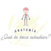 Anatomía - Esplacnología
