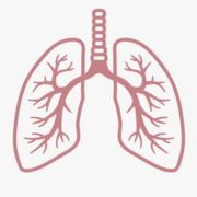 Junior Medicine- Respiratory