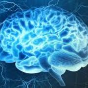 Intro To Cognitive Science