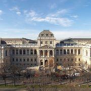 Wien Aufnahmeprüfung M.Sc. Psychologie 2020