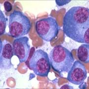 Pathology MedEd Slides