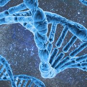 MCAT Biology/Biochemistry