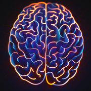 Psychology - Cognitive