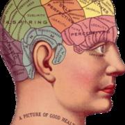 KU132G Introduktion till kognitiv neurovetenskap och positiv psykologi G1N, 7,5 hp